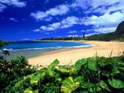 Generic Hawaii Photo