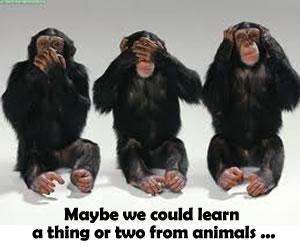 Smarter Than Humans