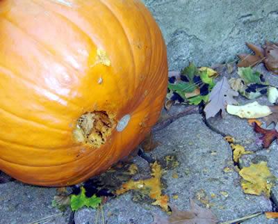 Hole in the Pumpkin