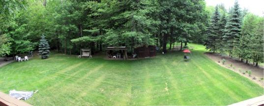 RuralBackyard_Lawn