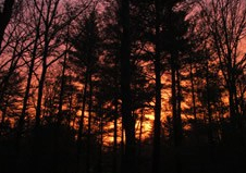 March7_Sunset2